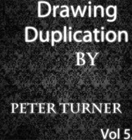 Drawing Duplications (Vol 5) by Peter Turner